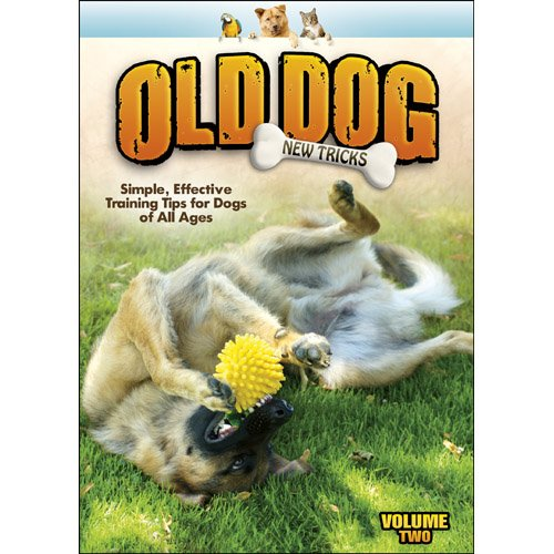 Old Dog, New Tricks V.2