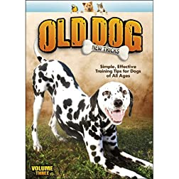 Old Dog, New Tricks V.3