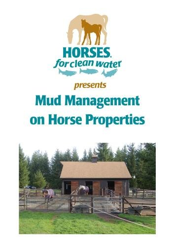 Mud Management on Horse Properties