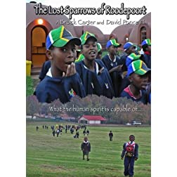 The Lost Sparrows of Roodepoort