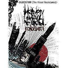 Bildersturm: Iconoclast II (The Visual Resistance)
