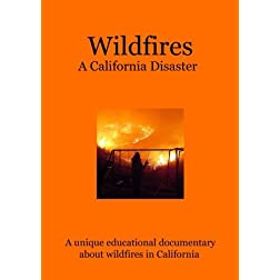 Wildfires: A California Disaster