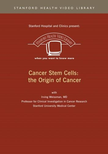 Cancer Stem Cells: the Origin of Cancer