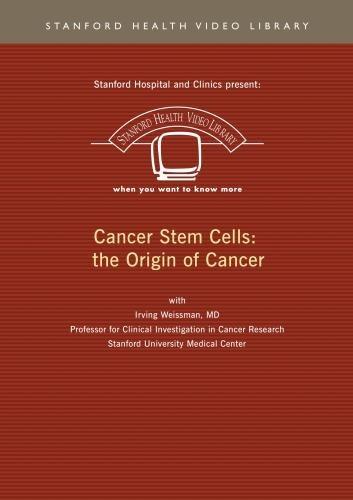 Cancer Stem Cells: the Origin of Cancer