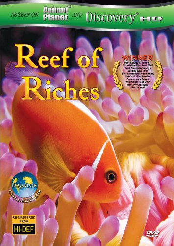 Equator: Reefs of Riches