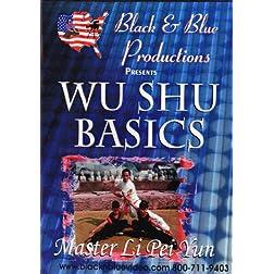 Wushu Basics