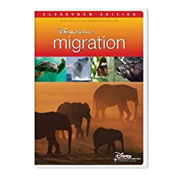 Disneynature Migration Classroom Edition [Interactive DVD]