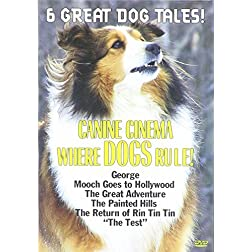Canine Cinema: Where Dogs Rule