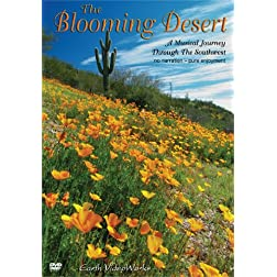 The Blooming Desert