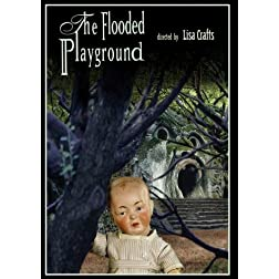 The Flooded Playground (Institutional Use: Library/High School/Non-Profit)