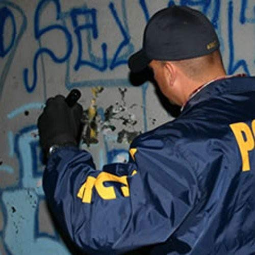Gangland: Die, Snitch, Die