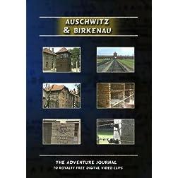 Auschwitz & Birkenau Royalty Free Stock Footage