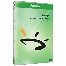 Chromosomes & Genes