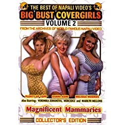 The Best of Napali Video's Big Bust Covergirls, Vol. 2: Magnificent Mammaries