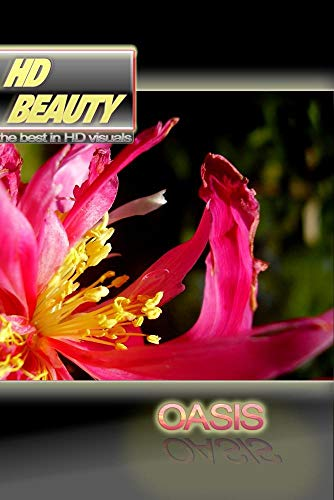 HD BEAUTY 1 / OASIS