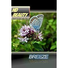 HD BEAUTY 2 / BREEZE
