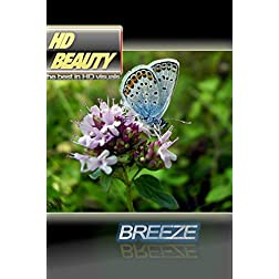 HD BEAUTY 2 / BREEZE