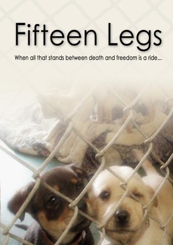 Fifteen Legs