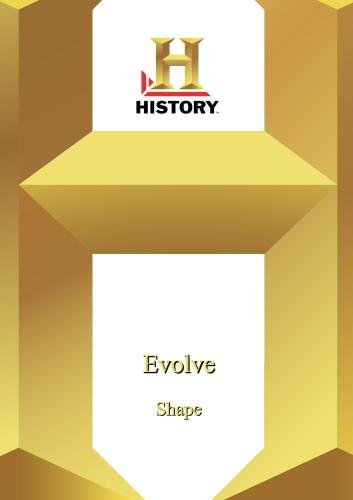 History --Evolve: Shape