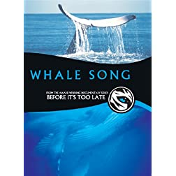 Before It's Too Late - WhaleSong