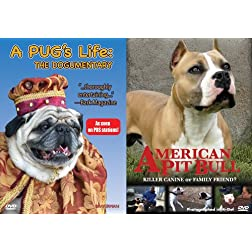 A Pug's Life/American Pit Bull
