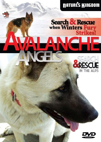 Avalanche Angels