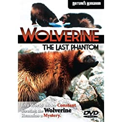Wolverine - The Last Phantom