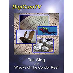 Tek Sing & Wrecks of The Condor Reef