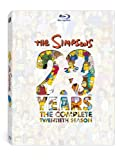 Simpsons 20th Season