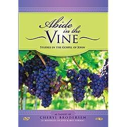 Abide in the Vine DVD/MP3 Set: Gospel of John