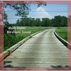 Maddy Studios Mid Atlantic Summer