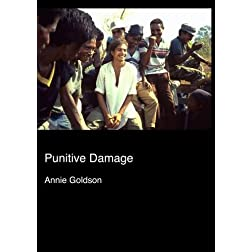 Punitive Damage (Institutional Use)
