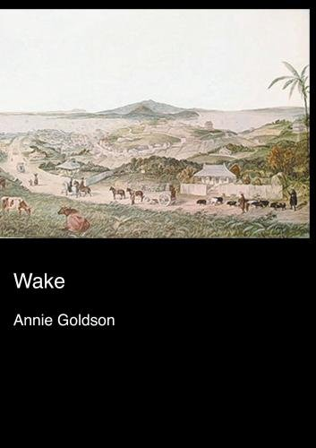 Wake (Institutional Use)
