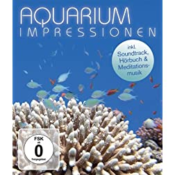 Aquarium Impressions