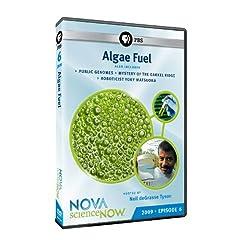 Science NOW 2009: Episode 6: Algae Fuel
