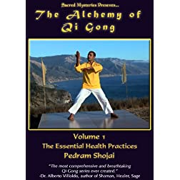 The Alchemy of Qi Gong Volume I: The Essential Health Practices