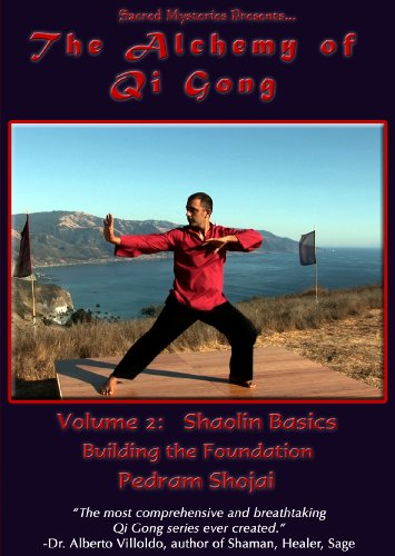 The Alchemy of Qi Gong Volume II: Shaolin Basics: Building the Foundation