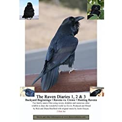 The Raven Diaries 1, 2 & 3 (2 Disk Set)