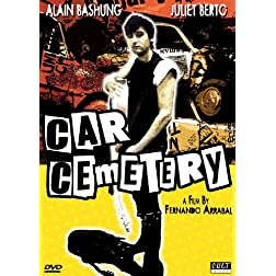 Car Cemetery (Ws Sub)