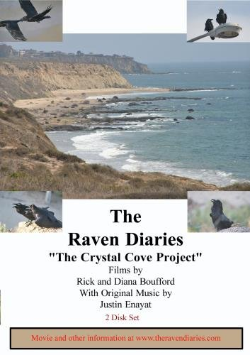 The Raven Diaries Part 4 - Crystal Cove Project (2 Disk Set)