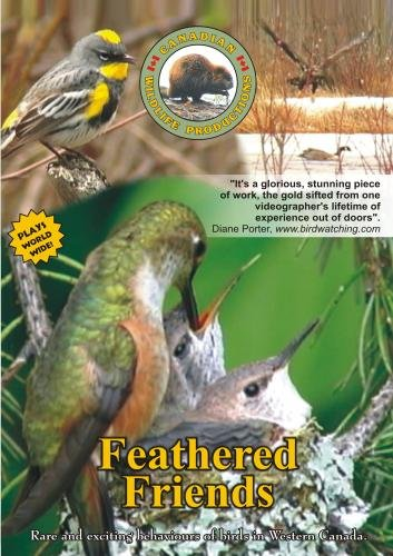 Feathered Friends Vol. 4