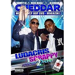 CHEDDAR DVD VOLUME 11