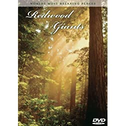 World's Most Relaxing Places: Redwood Giants