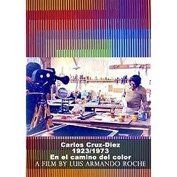 Carlos Cruz Diez 1923/1973 en el camino del color