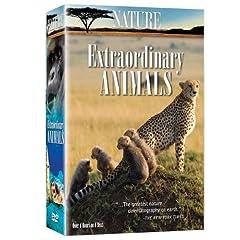 Nature: Extraordinary Animals (6pc)