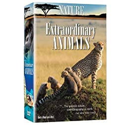 Nature: Extraordinary Animals (6pc)