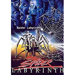 Spider Labyrinth
