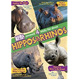 Hippos & Rhinos