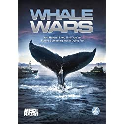 Whale Wars: Season 1