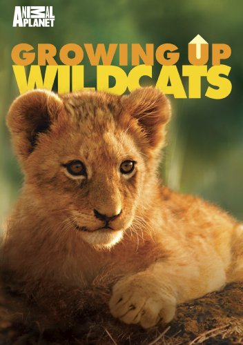 Growing Up Wild Cats